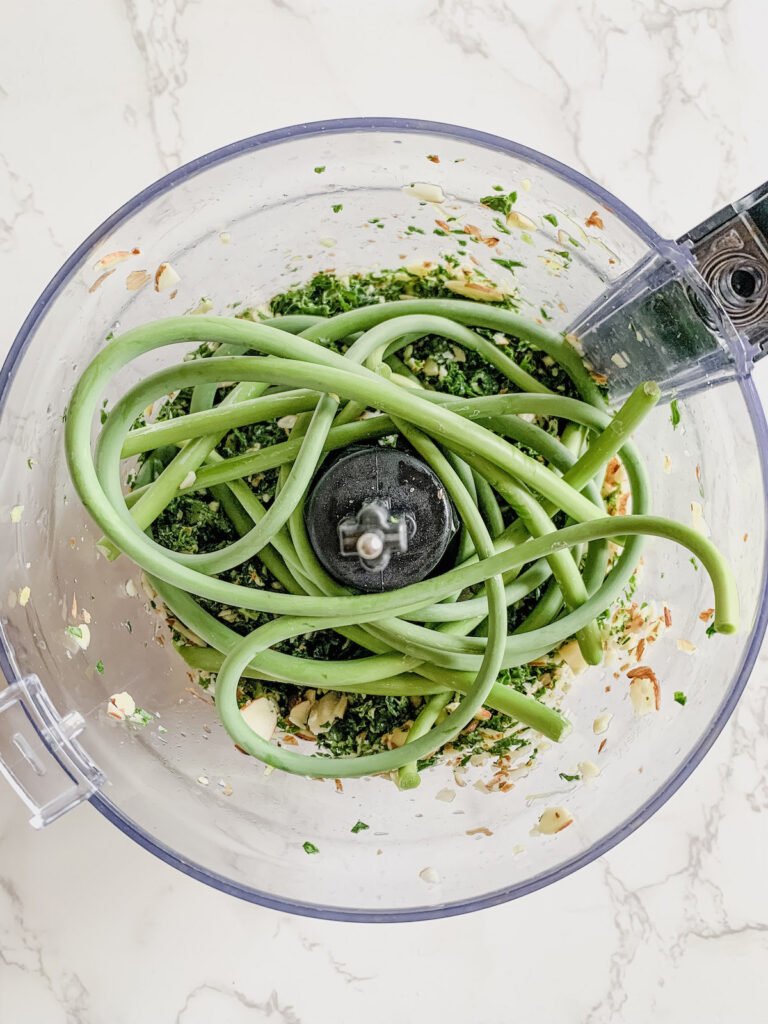 Trimmed garlic scapes in the bowl of a food processor